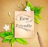 与新春天绿色的Eco友好的纸板料生叶和流程 库存图片