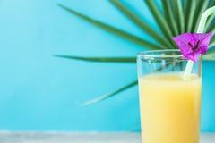 与新近地被按的菠萝橙色椰子汁秸杆和小花的高玻璃 在蓝色背景的圆的棕榈树叶子 库存图片