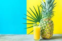 与新近地被按的菠萝橙色椰子汁秸杆花的高玻璃 在Duotone蓝色黄色背景的圆的棕榈叶 库存图片