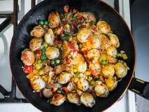 与新鲜的健康菜的蒸的饺子在平底锅油煎了 免版税库存照片