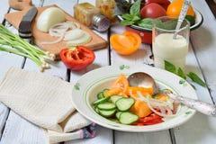 与新鲜的成熟夏天菜的素食健康沙拉:蕃茄、黄瓜、胡椒和葱在轻的木背景 库存图片