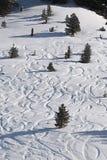 与新鲜的曲线的滑雪倾斜 免版税库存照片