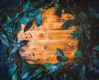 与新鲜的月桂属的平的位置背景在木切板离开 库存照片