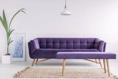与新鲜的植物的明亮的客厅内部、海报和地毯在地板上和紫色长沙发和长凳在真正的照片与空的w 免版税图库摄影