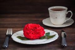 与新鲜的红色庭院的浪漫晚餐设置上升了 华伦泰或婚礼明信片概念 免版税库存照片