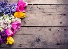 与新鲜的芳香丁香和桃红色和黄色郁金香的背景 图库摄影