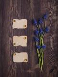 与新鲜的蓝色的背景上色文本的空白的标记在褐色 图库摄影