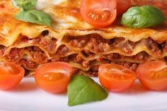 与新鲜的蓬蒿的烤宽面条和宏观的西红柿 免版税库存图片