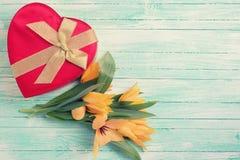 与新鲜的郁金香和礼物盒的背景 免版税库存照片