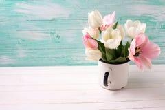 与新鲜的郁金香和水仙花的背景 免版税库存图片