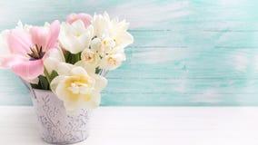 与新鲜的郁金香花的背景 免版税库存图片