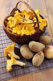 与新鲜的金黄黄蘑菇和potatos的篮子在桌上 免版税库存图片