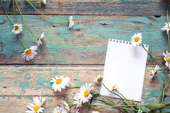 与新鲜的雏菊的空白的笔记本页在老木背景 免版税库存图片