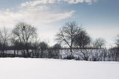 与新鲜的雪和树剪影的冬天风景 库存图片
