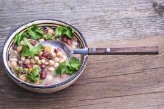 与新鲜的香菜的混杂的豆汤 免版税库存照片