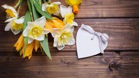 与新鲜的黄水仙的背景和郁金香和装饰心脏 免版税库存照片