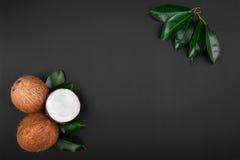 与新鲜的绿色叶子的椰子在黑暗的背景 可口椰子在半切开了和整个 成熟和开胃椰子 免版税库存照片