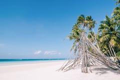 与新鲜的绿色棕榈树的竹小屋在站立在白色沙子海滩附近 免版税库存照片