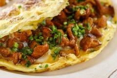 与新鲜的黄蘑菇的传统炒蛋 免版税库存照片