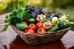 与新鲜的ecologial菜的篮子从我的庭院 库存照片
