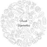 与新鲜蔬菜的例证 免版税库存照片