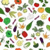 与新鲜蔬菜的手拉的无缝的样式 图库摄影