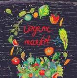 与新鲜蔬菜的有机市场横幅 图库摄影