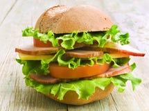 与新鲜蔬菜的自创汉堡包 库存照片