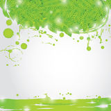 与新绿色的夏天分支在自然本底离开 库存照片
