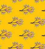 与新绿色的春天分支在橙色背景无缝的传染媒介样式离开 图库摄影