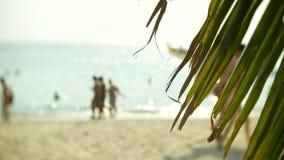 与无法认出的旅游人民的拥挤沙滩场面 迷离,4k,慢镜头 股票录像