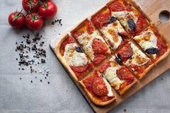 与无盐干酪、乳酪和蓬蒿叶子的土气意大利薄饼 免版税库存照片
