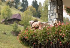与无盖货车的装饰马附有与花的一张花盆在房子的角落麸皮周围的在罗马尼亚 库存图片