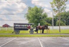 与无盖货车的马在门诺派中的严紧派的国家 库存图片