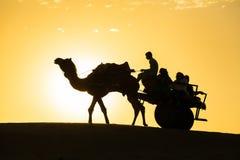 与无盖货车的骆驼剪影在塔尔沙漠沙丘  免版税库存图片