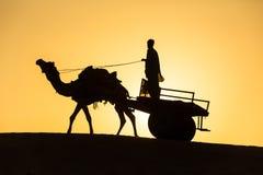 与无盖货车的骆驼剪影在塔尔沙漠 免版税库存图片