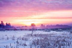 与日出和雾的冬天农村风景 免版税库存照片