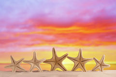 与日出天空的白色海星在白色沙子靠岸 免版税库存照片