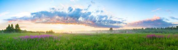 与日出的夏天风景 免版税库存照片