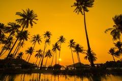 与日出的游泳池 免版税库存照片