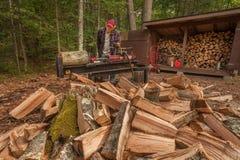 与日志分离机的切口木头 免版税库存照片