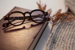 与日志和眼镜的羊毛布料 库存图片
