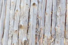 与日志的木墙壁背景 库存照片