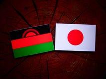 与日本旗子的马拉维旗子在被隔绝的树桩 免版税图库摄影