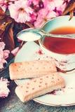 与日本樱桃树开花的美丽,葡萄酒茶杯和苏格兰脆饼,关闭 库存照片