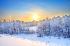 与日落的冬天农村风景在森林里 免版税图库摄影