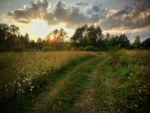 与日落的风景在领域 库存图片