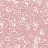 与日语佐仓美丽的开花的花的浪漫自然无缝的样式手拉与在桃红色的空白线路 向量例证