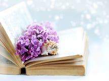与旧书、淡紫色花和一点贝壳的葡萄酒浪漫背景 免版税图库摄影