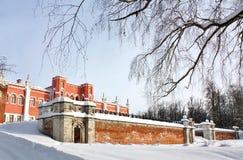 与旧时宫殿的横向 免版税库存照片